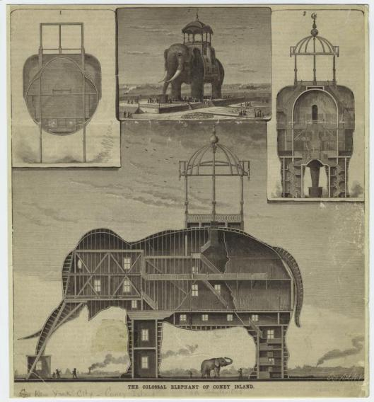 Image illustrating several views of the elephant - Courtesy of the NYPL.
